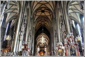 St. Stephen's Cathedral by Flanegan