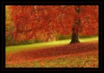 autumn by Hartmut-Lerch