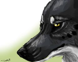 Lucious - Speedpaint by TieWolf