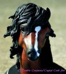 Realistic Horse Portrait Bust by crystalcookart