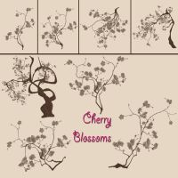 Cherry Blossom Brush Pack (3) (PREVIEW by Yvette-Cheri-Sanders