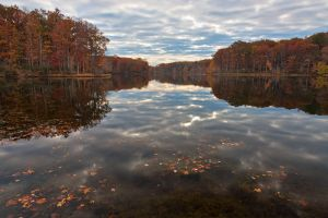 Seneca Fall Reflections II by somadjinn
