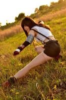 Tifa Lockhart-Brawler by leppa-berry