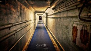 Tunnel HDR by Lion6255
