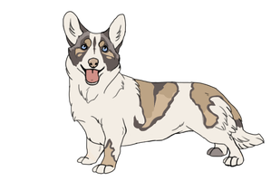 Corgi adopt _closed by LewKat