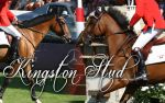 Kingston Stud by Amber2210