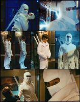 STORM SHADOW: The White Ninja by Princess-Kraehe