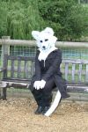 White fursuit partial by DawnKestrel