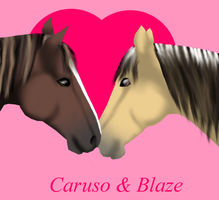 Caruso and Blaze by Finchflight