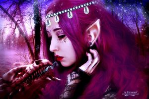 The elf by annemaria48