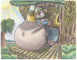 Very Pregnant Tiny Kong. by Virus-20