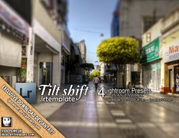 Tilt shift PAWLUK Presets by ipawluk