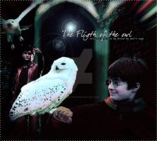 Harry Potter Memories by hpfanatic97
