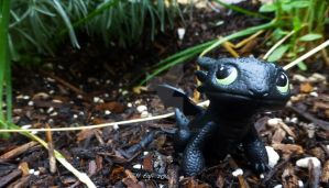 Toothless out playing - Egli by SurfTiki