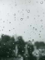 raindrops 02 by bisiobisio
