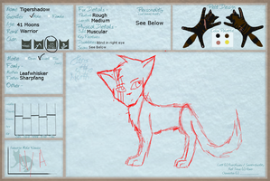 COTN Tigershadow Ref by MysteryKittenThe1st