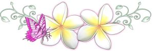 Frangipani Butterfly Tattoo by 13star