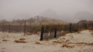Cape Cod Fog by Daisy919