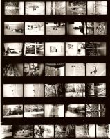Contact Sheet 002 by kidwithscissors