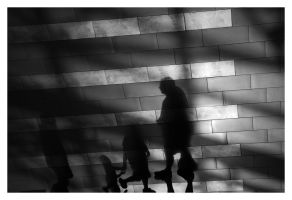 our frail shadows IV by wchild