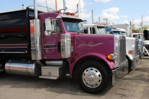 Farmtruck Peterbilt by Wolfje1975