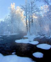 Winter day in Finland by KariLiimatainen