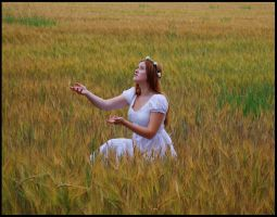 Fields of Gold I by Eirian-stock
