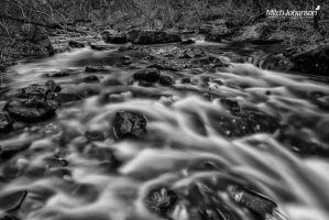 Flowing From Autumn BW by mjohanson