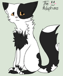 Cat Adoptable! -OPEN- by The-Adoptions