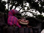 Cheshire Cat by MauiMelle