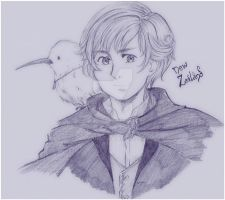 APH: New Zealand sketch by Naivara