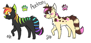 Wolf adoptable Auction!! by skrollmon