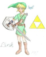 SSBB: Triforce Link by spiderboy1