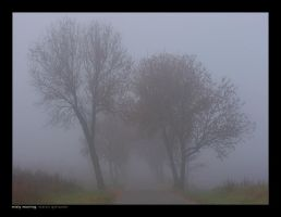 Misty Morning by yonashek