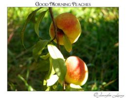 Good Morning Peaches 1 by JustLovely