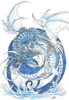 Water Dragon by Koggg