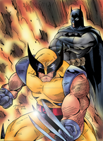 Wolverine and Batman by BIG-D-ARTiZ