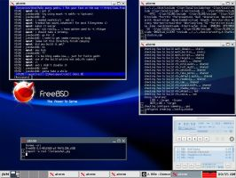 FreeBSD and JWM by UnixPunx83