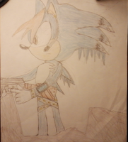 Frostbite The Hedgehog 2.0 by frostbite15071