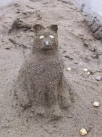 Sand Kitty by stardove3
