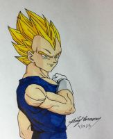Super Saiyan 1 Vegeta by gokujr96