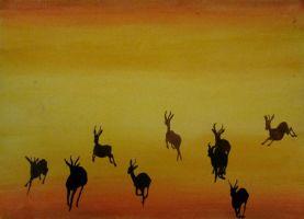 Gazelle Stampede by Lost-in-the-day