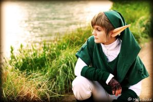 Link by the Lake by Astro-Kid-248