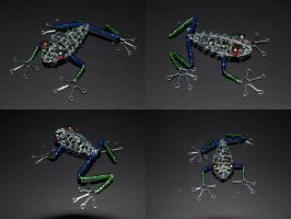 Red Eyed Tree Frog by Death-Pony7