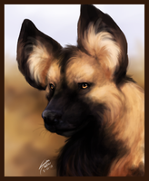 Speed Paint - African Wild Dog by ClemiKinkajou