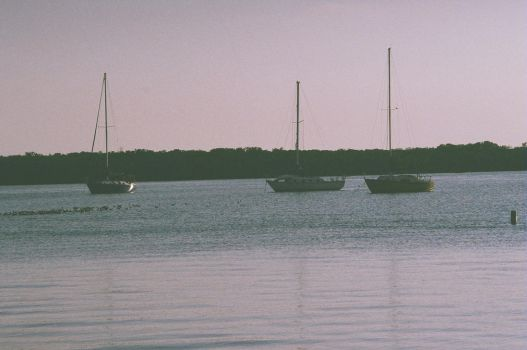Birds and boats in a row by Sonic007