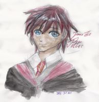 James Sirius Potter by AlexSakura