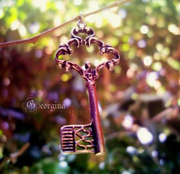 FaIrY  tReE kEy by blondepassion