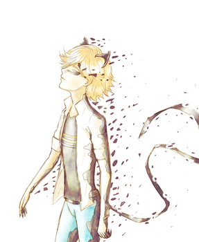 Miraculous Ladybug - Adrien/Chat Noir by nymei