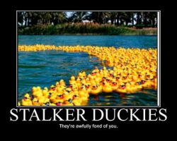 Stalker-duckies by CatrionaMalfoy